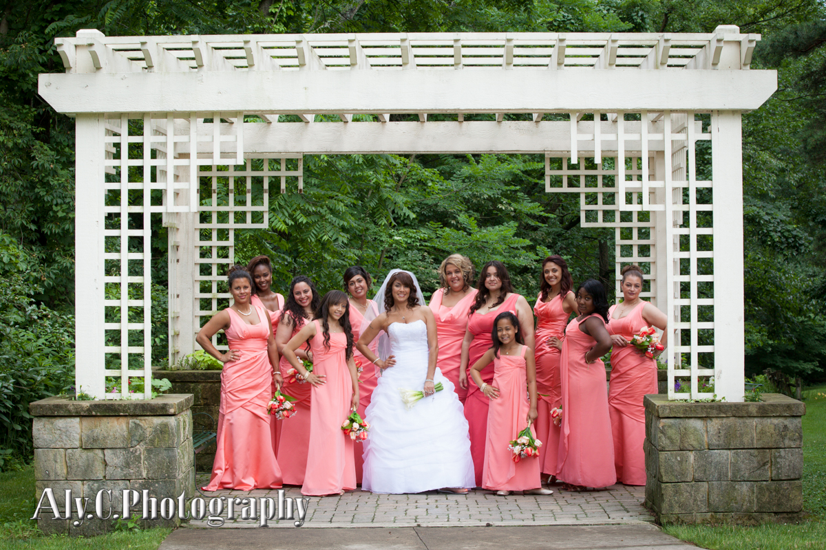 July 2013 aly c photography for A david anthony salon lorain