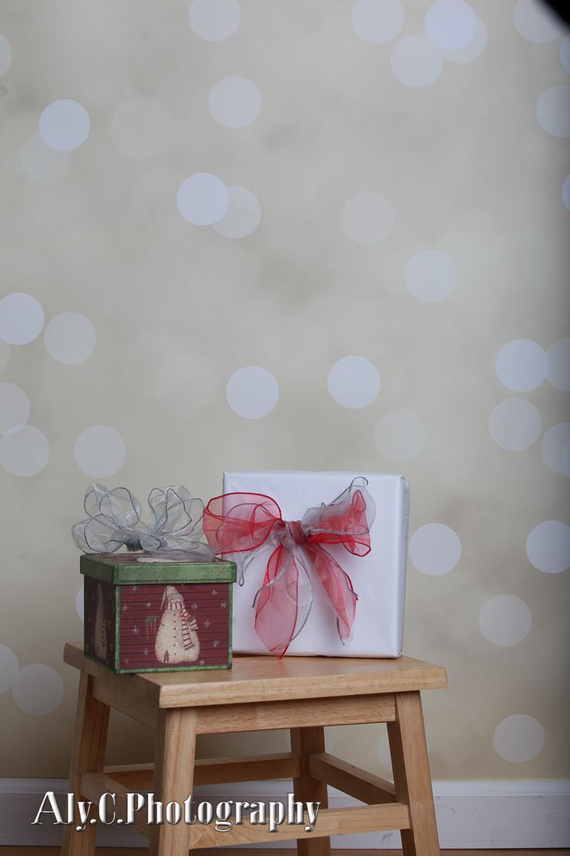 Holiday Minis 2014-9